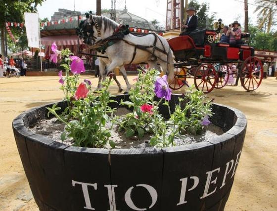 Andalucía - Feria del caballo - Jerez