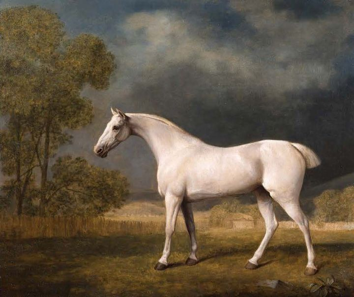 George Stubbs | George Stubbs - Recording the Horse, Beauty Breeding & Speed | The ...
