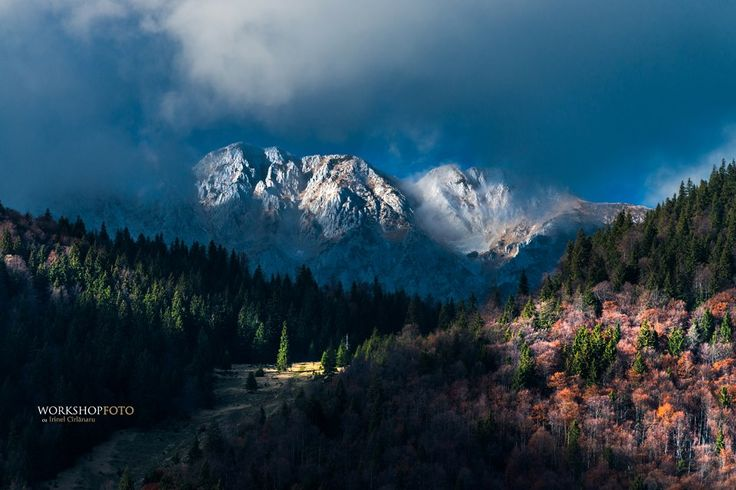 Winter colours at Piatra Craiului, Magura, Brasov, Romania (by Irinel Cirlanaru)