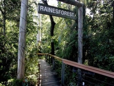 Rainesforest Massage and Day Spa Your Complete Brisbane Day Spa Experience - Imagine a Natural Bush Setting and Peaceful Ambience in the middle of Indooroopilly, Brisbane.  www.rainesforestmassage.com