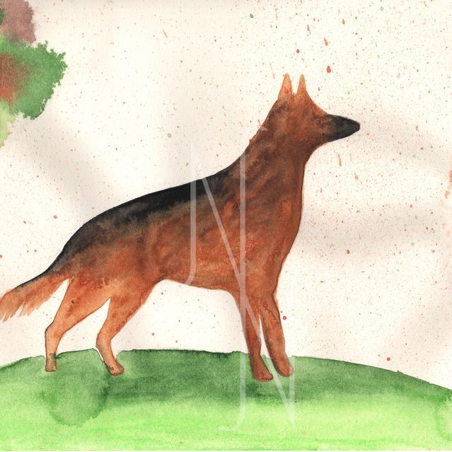 - German Shepherd - Done with @winsorandnewton watercolours Another silhouette. This is a dog, a german shepherd 😊 #nataschank #nadjaf_khani #winsorandnewton  #watercolour #silhouette #dog #drawing #followme #sketch #sketchbook #arts_help #art #art_empire #art_spotlight #aartistic_dreamers #artsanity #artspix #artist_4_shoutout #artofdrawing #help_4_artists #artists_4_feature #imaginationarts #daily_art #artcollective #artspipl #worldofartists #arts_gallery #proartists #justartspiration