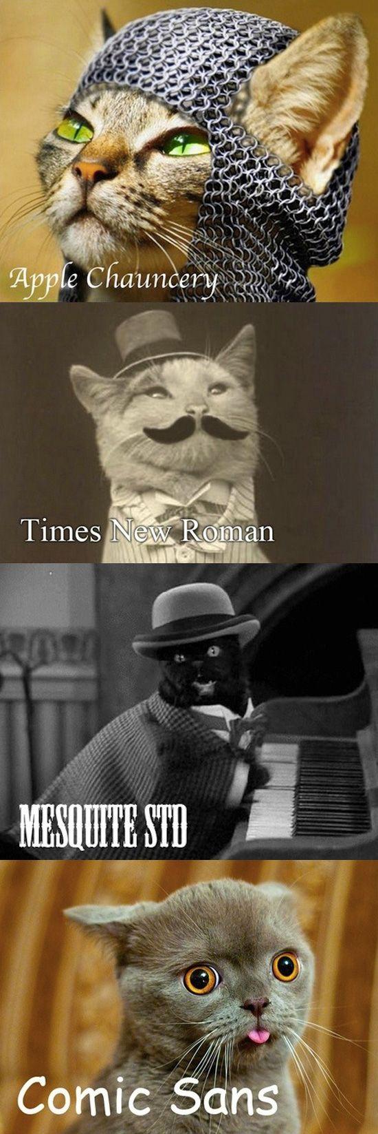 Llegan los gatitos tipográficos!!