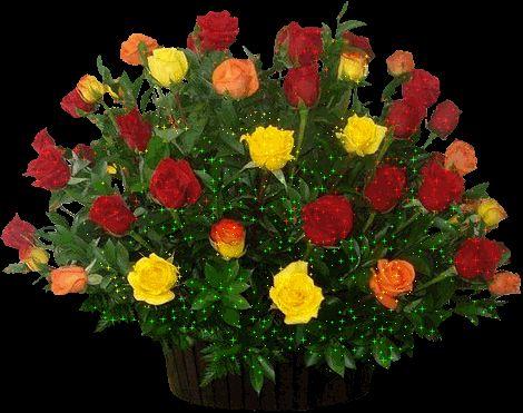 Fotos de rosas hermosas image gallery hermosas rosas blancas banco de im 193 genes las flores - Ramos de flores hermosas ...
