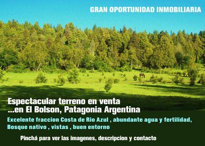 ENDESA y la negligencia de Timerman posibilitarían graves desastres ecológicos en Argentina   Diario Patagonia BWN