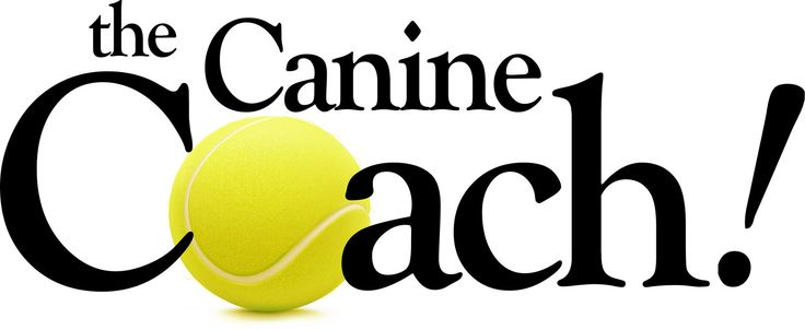 The Canine Coach! Voted Twin Cities #1 Dog Trainer: behavior training, group classes, in-home training, boot camp in Minneapolis, St. Paul, St. Louis Park, Maple Grove, West St. Paul