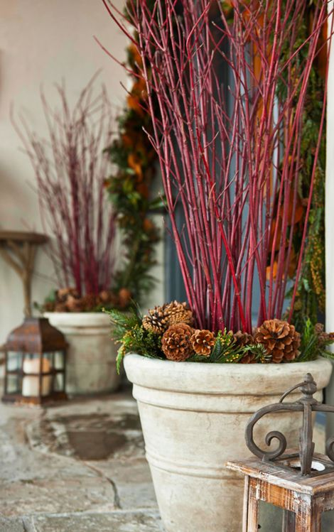 Outdoor Holiday Decorating - Traditional Home® - potted red branches  (also good for other times of year)