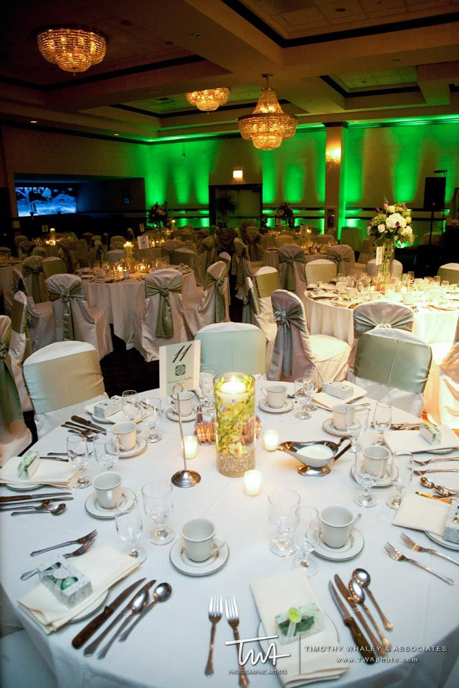 38 best gaelic park twa wedding photography chicago images on twa weddings at gaelic park enter to win our complete wedding giveaway click the junglespirit Gallery