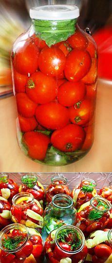Рецепты от Татьяны - холодная засолка помидоров.