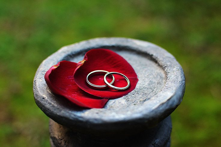 Alternative and romantic ring case with rose petals
