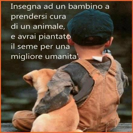 Teach a child to take care of an animal, and you have planted the seed for a better humanity.