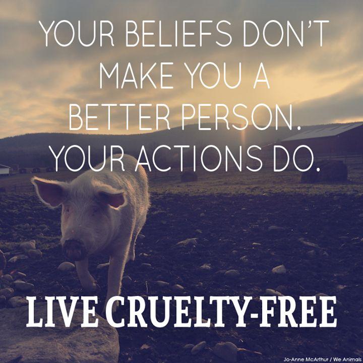 No son tus creencias las que te hacen una mejor persona,  sino tus acciones. Vive libre de crueldad.