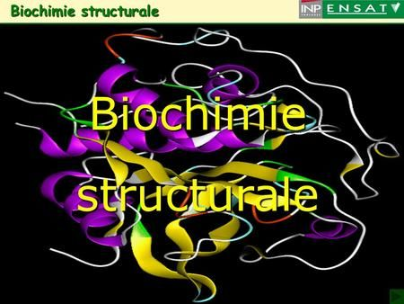 1 Biochimie structurale Biochimie structuraleBiochimiestructurale.