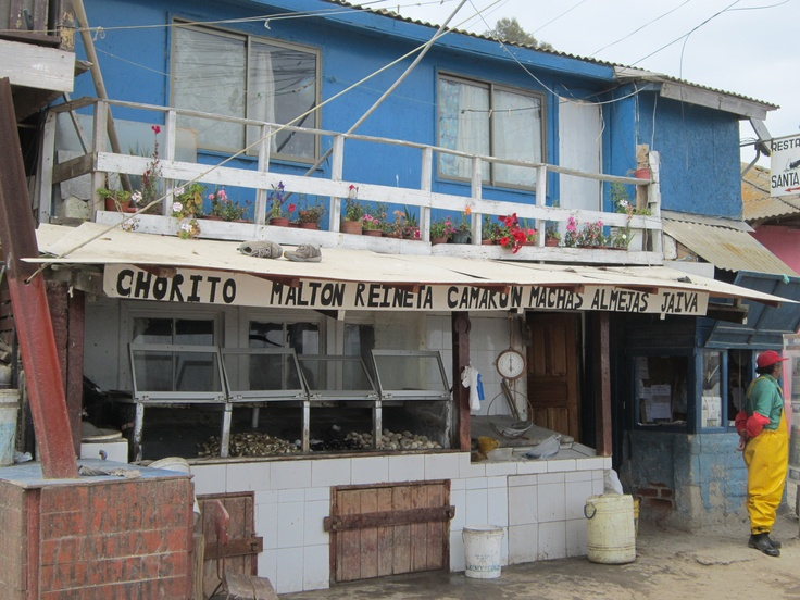 Literally yards from the sea; Fish Market in Horcon, Chile... with adorable flat above!