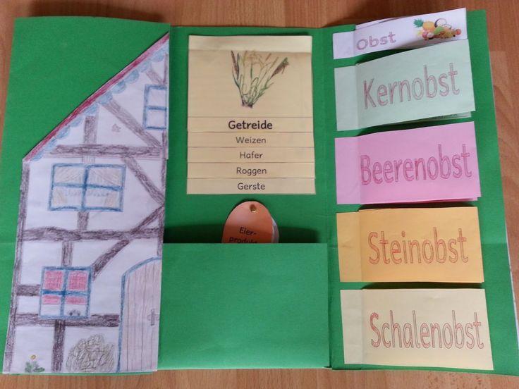 Lapbooks in der Grundschule: Sachunterricht Bauernhof