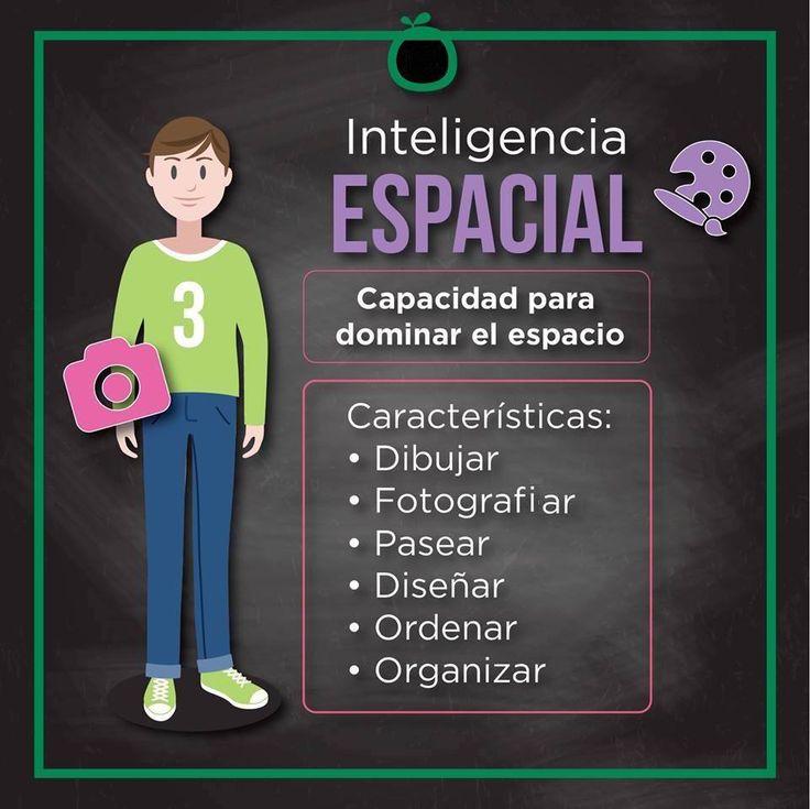 La Teoría de las Inteligencias Múltiples fue ideada por el psicólogo estadounidenseHoward Gardner como contrapeso al paradigma de una inteligencia única. Gardner propuso que la vida humana requiere del desarrollo …