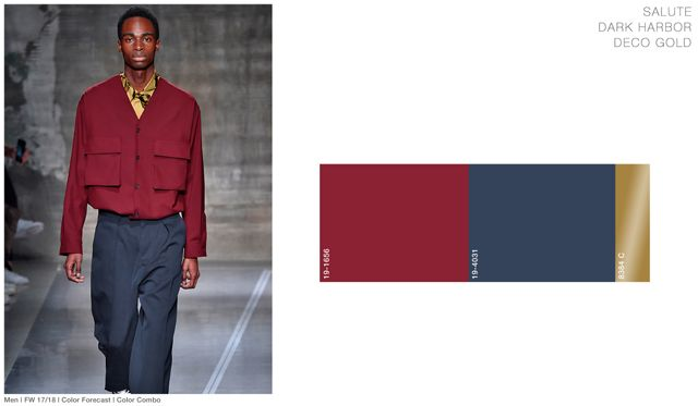#FashionSnoops FW 17/18 color on #WeConnectFashion. Men's: Salute -Imperial Jewel Tones Palette combo
