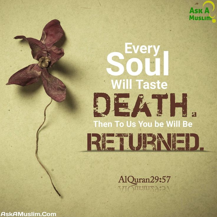 Indeed we belong to Allah and to him is the final return