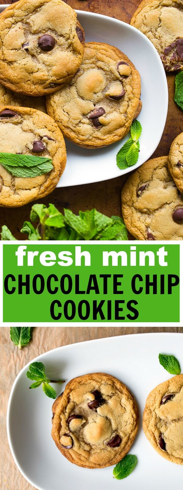 Homemade chocolate chip cookies made with real fresh mint! Mint chocolate chip cookies are my new favorite chocolate chip cookie from scratch recipe!