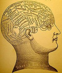 A phrenological mapping[1] of the brain. Phrenology was among the first attempts to correlate mental functions with specific parts of the brain.