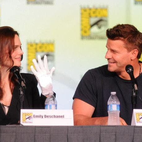 This transcript from the 'Bones' Comic-Con panel points to some serious confusion in the audience.