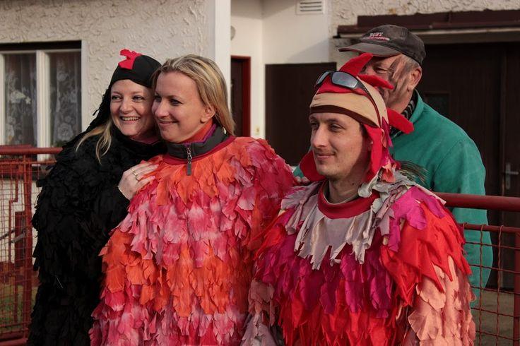 Mardi Gras in Chrášťany 2016 / Masopust v Chrášťanech - 6.2.2016