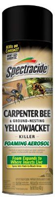 Spectracide Carpenter Bee & Ground-Nesting Yellowjacket Killer Foaming Aerosol (HG-53371)