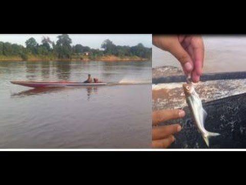 Real nature and Amazing fishing place. This Sekong river is Cambodia.