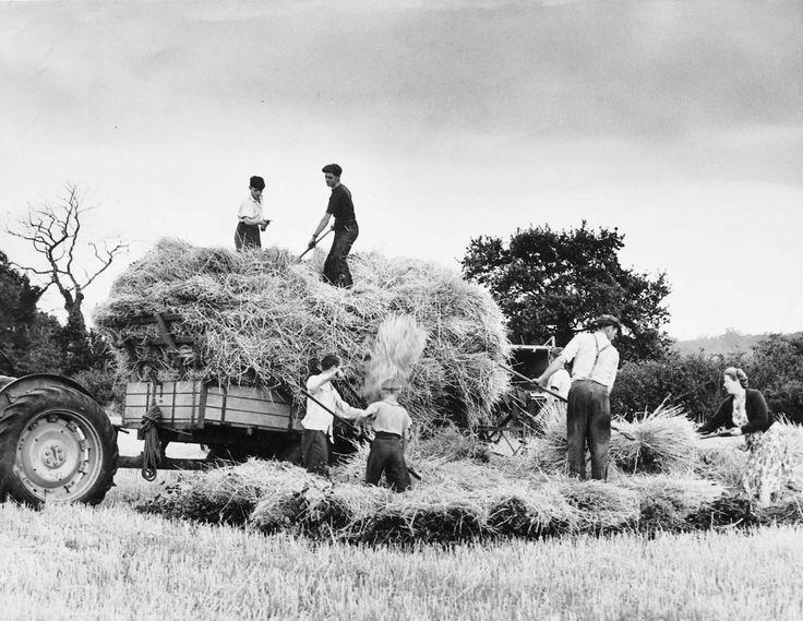 Land Work