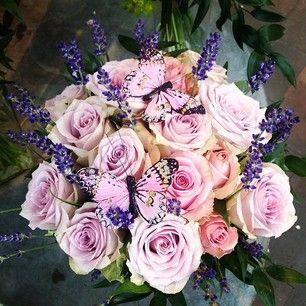 lilla roser og lavendel - Google-søgning