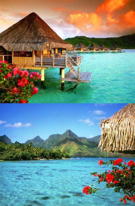 Spend your honeymoon on the beautiful island of Bora Bora.  Book your travel with www.perfectbeginningsdestinationweddings.com