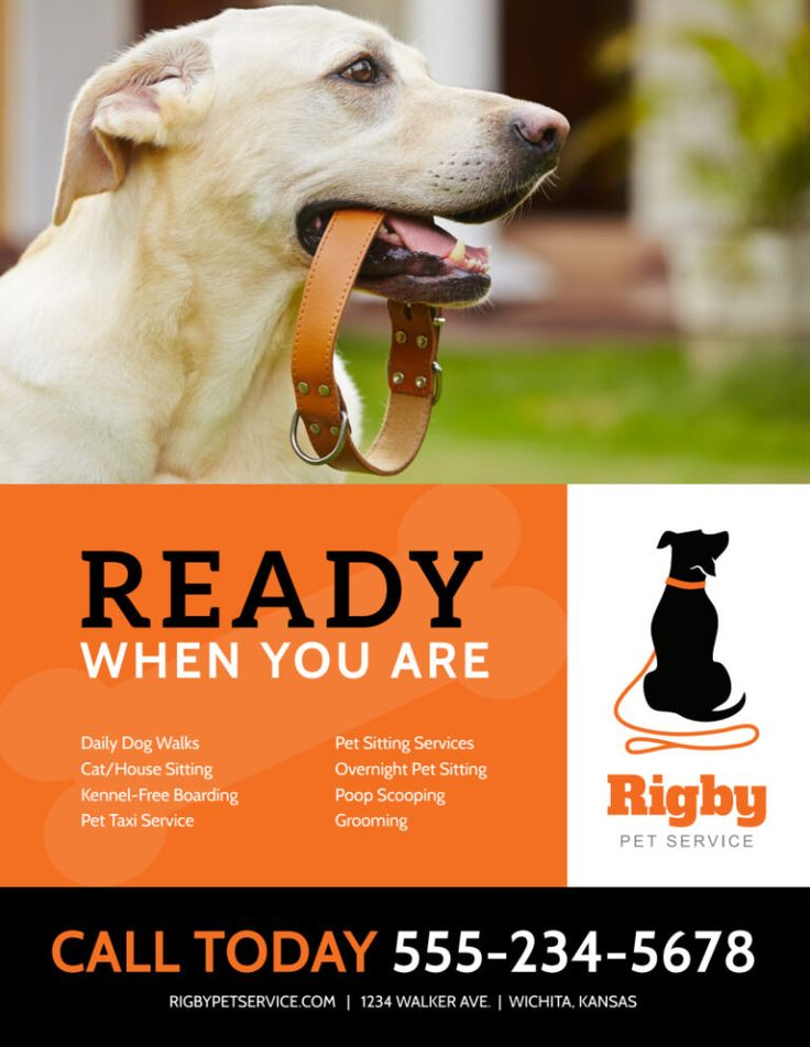 039 Dog Walker Flyers Lovely Corporate Identity Template Of Inside