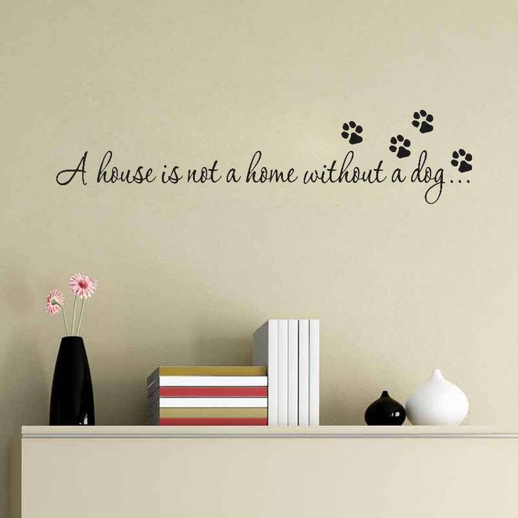 Best On The Wall Images On Pinterest Home Adhesive And Deko - Custom vinyl wall decals dogs