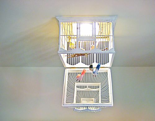 17 best abat jour et lustre images on pinterest chandeliers lamp shades and lamps. Black Bedroom Furniture Sets. Home Design Ideas