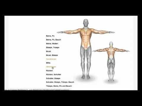 Bodybuilding Training  Trainingsplan Erstellen Fr Muskelaufbau  Training  Karlesscom