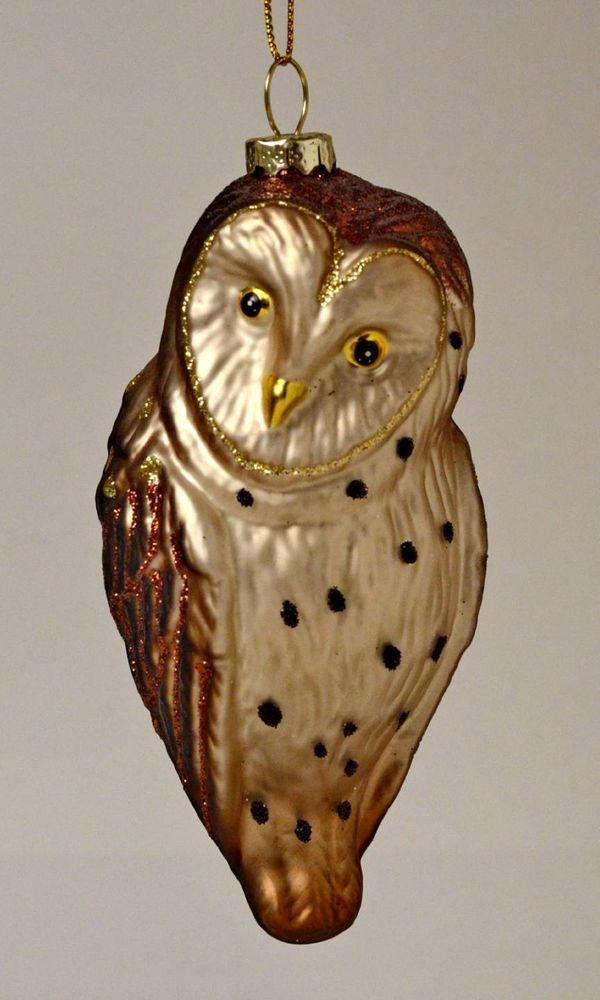 Images about owl christmas glass ornament uil