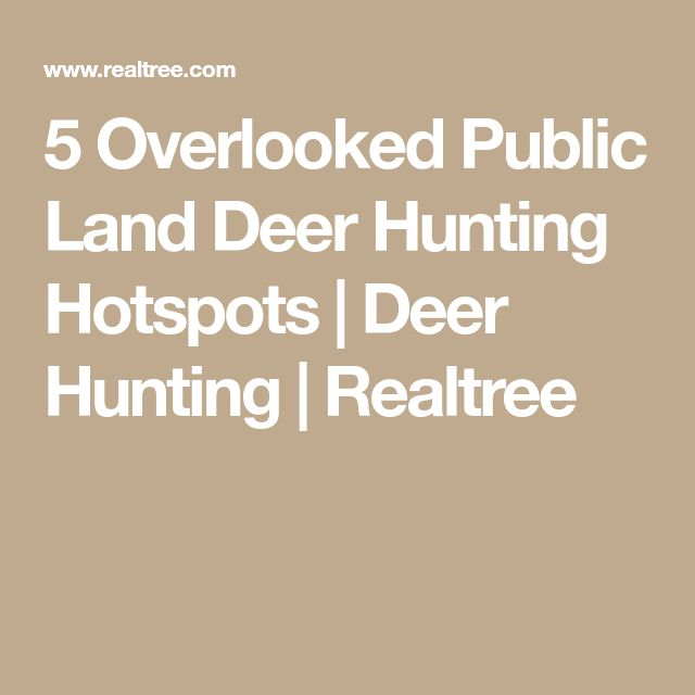 The 25+ best Hunting land ideas on Pinterest Deer feeders, Deer - landman resume example