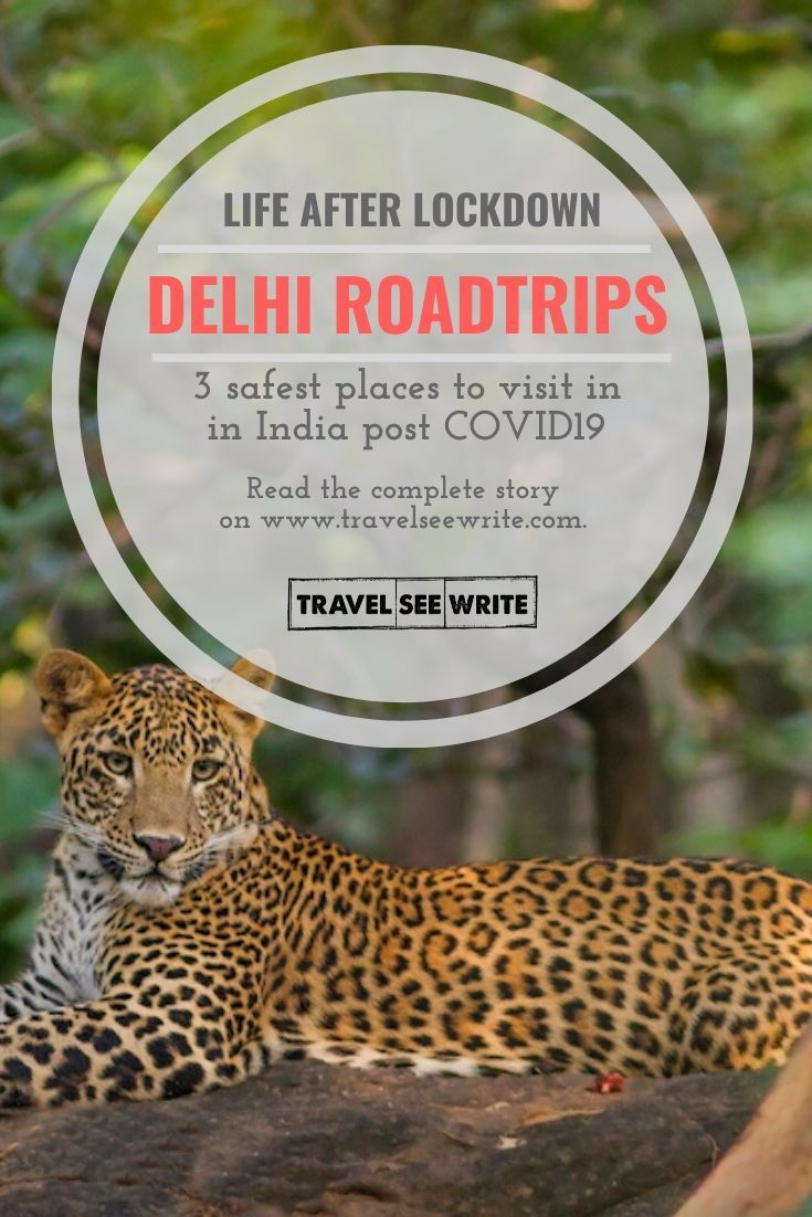 Pin On India Travel Destinations India