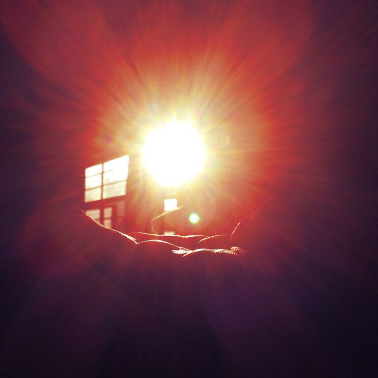 Mr. Sun. ❤️☀️