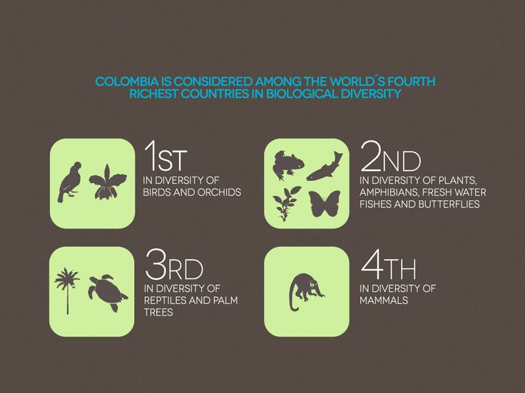 Colombia is considered among the world´s richest countries in biodiversity