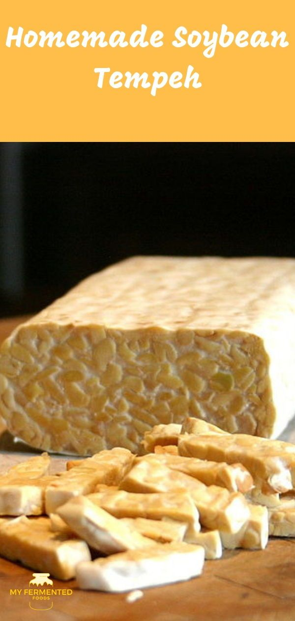 How To Make Tempeh At Home My Fermented Foods Recipe Food Fermented Foods Fermented Foods Benefits