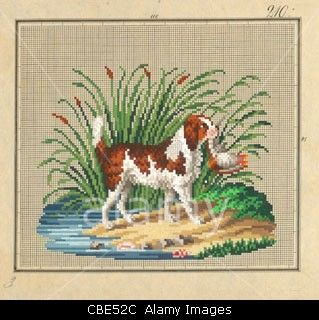 Berlin wool work pattern of spaniel retrieving bird Stock Photo, Picture and Royalty Free Image.Pic 41493268