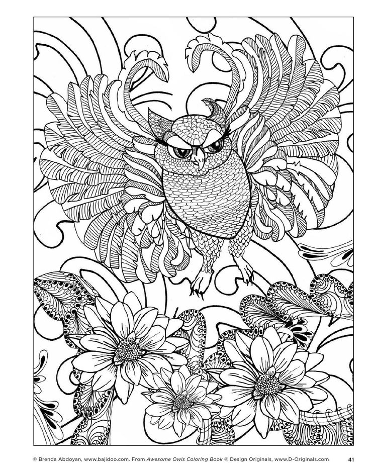 Epic Owl Coloring Pages For Adults