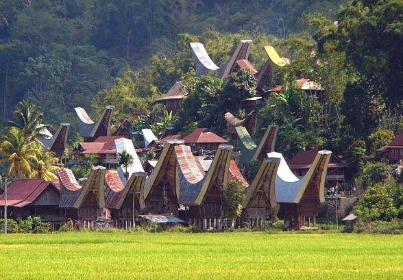 Sulawesi: de prachtige Tongkonan huizen
