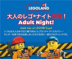 大人のレゴ®ナイト