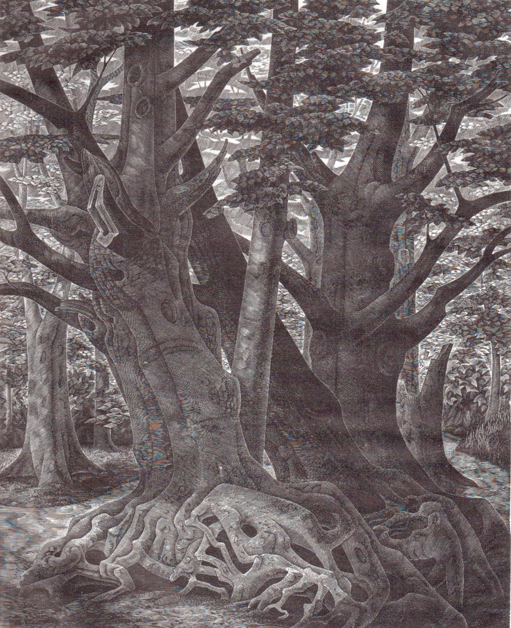 "Monica Poole (1921-2003) ""Old Trees"" wood engraving. Signed, titled and numbered 23/75. 241 X 196 mm."
