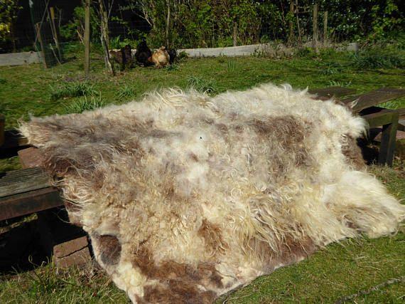 Hand gevilte kleed van de Ouessant schaap met super zachte glanzende vacht. De vacht heeft een prachtige kleuren van ivoorwit tot donkerbruin. Bij het vilten zijn er alleen water en groenezeep gebruik. Het hele proces is hier te zien: www.naaiatelieranci.nl/wol/vilten-1/vachtvilten-in-beelden Deze schapen zijn alleen geschoren en niet gedood voor haar vacht, ze loopt nog vrolijk rond! Dus heel diervriendelijk!  Lekker warm voor op de vloer of op de bank. Afmeting: ca. 115&#x2F...
