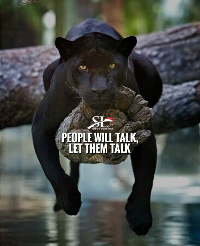 People Will Talk Make Sure You Don T Lose Your Sleep Motivational Quotes For Working Out Fitness Motivation Quotes Panther Quotes