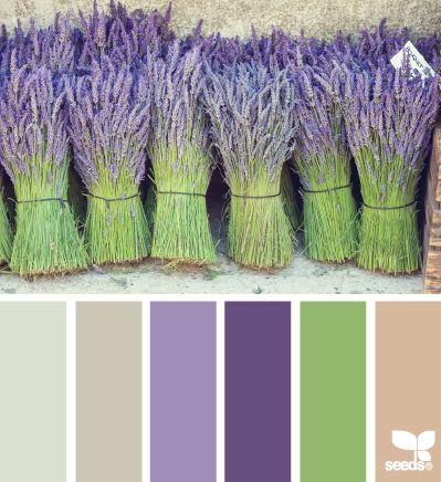De kleur van de Provence