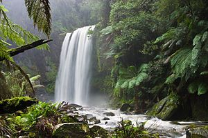 Google Image Result for http://upload.wikimedia.org/wikipedia/commons/thumb/3/36/Hopetoun_falls.jpg/300px-Hopetoun_falls.jpg