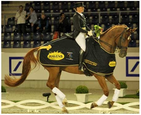 Werth & Hannes. How could I not be in love with an 18 hand chestnut #dressage superstar?